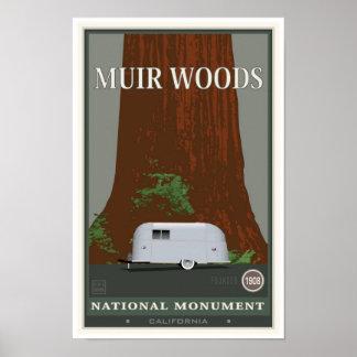 Monumento nacional 1 de maderas de Muir Poster