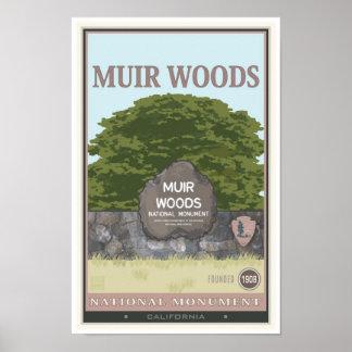 Monumento nacional 2 de maderas de Muir Poster