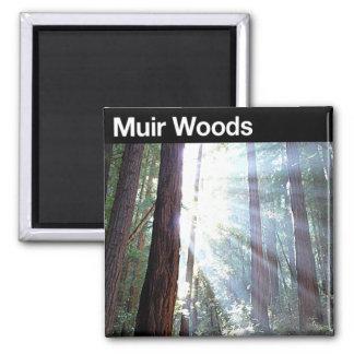 Monumento nacional de maderas de Muir Imanes
