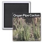 Monumento nacional del cactus del tubo de órgano imanes