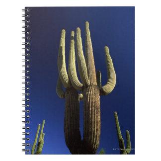 Monumento nacional del cactus del tubo de órgano libreta