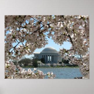 Monumento y flores de cerezo de Jefferson Póster