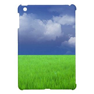 Monzón y campo de arroz verde