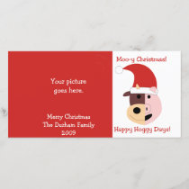 Moo-y Christmas and Happy Hoggy Days! Holiday Card