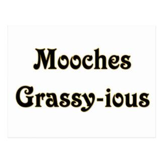 Mooches Grassy-ious Postcard
