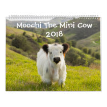 Moochi The Mini Cow 2018 Calendar