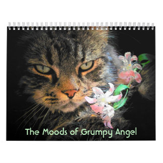 Moods of a Grumpy Angel Calendar