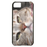 Moody Cat iPhone 5C Case