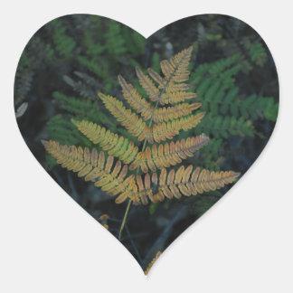 Moody Fern in the Santa Cruz Forest Heart Sticker