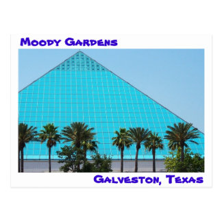 Moody Gardens Postcard