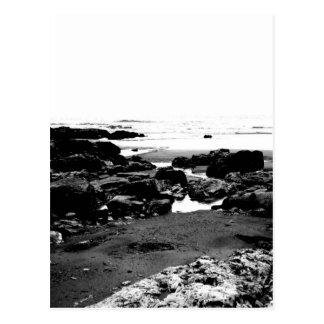 Moody Landscape Postcard
