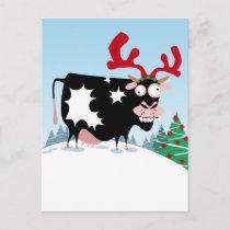 Mooey Christmas Cow Holiday Postcard