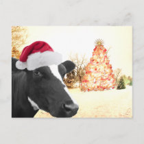 Mooey Christmas Winter Cow In Santa Hat Holiday Postcard