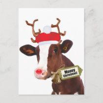 Mooey Merry Christmas Reindeer Cow Holiday Postcard