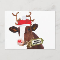Mooey Merry Christmas Reindeer Cow Holiday Postcard