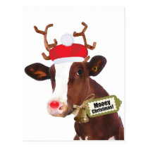 Mooey Merry Christmas Reindeer Cow Postcard