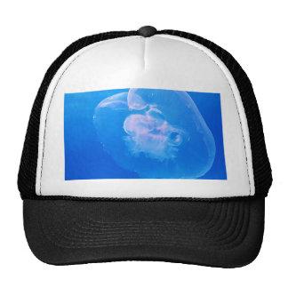 moon-12328 trucker hat