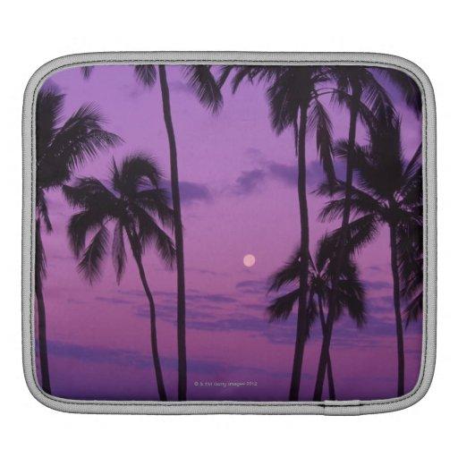 Moon and Palm Tree iPad Sleeve