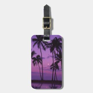 Moon and Palm Tree Travel Bag Tag