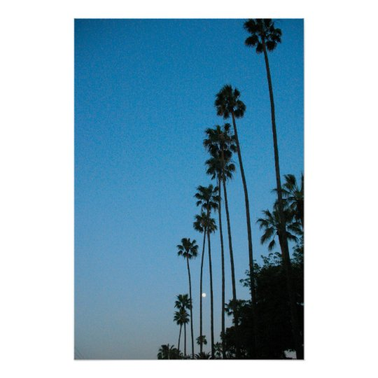 moon and palm trees poster