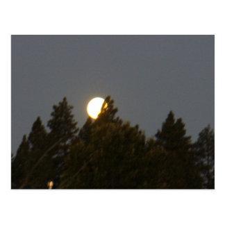 Moon at Sunrise Postcard