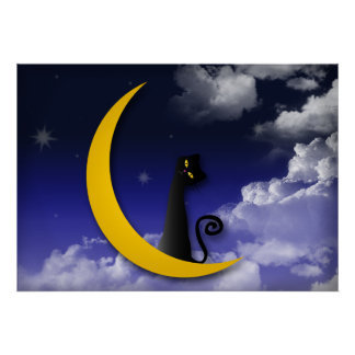 moon cat design poster