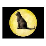 Moon Cat Post Card