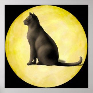 Moon Cat Poster