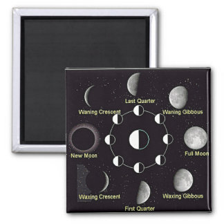 Moon Cycle Magnet