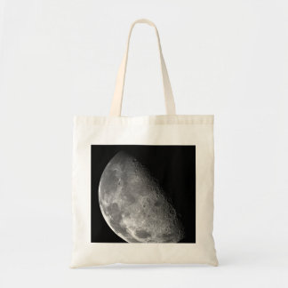 Moon from Galileo Planetary Space Mission Bag