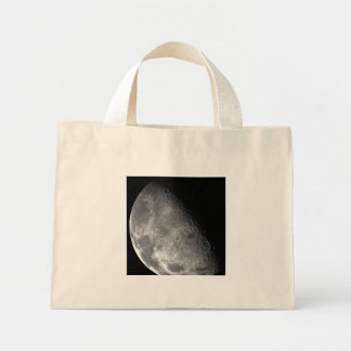 Moon from Galileo Planetary Space Mission Bags
