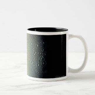 Moon from Space Two-Tone Coffee Mug