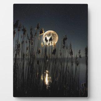Moon Glow Plaque