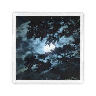 Moon Illuminates the Night behind Tree Branches Acrylic Tray
