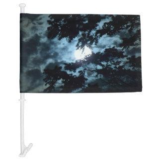 Moon Illuminates the Night behind Tree Branches Car Flag