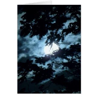 Moon Illuminates the Night behind Tree Branches Card