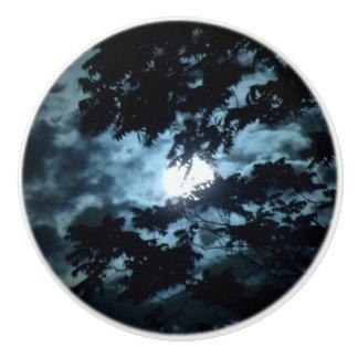 Moon Illuminates the Night behind Tree Branches Ceramic Knob