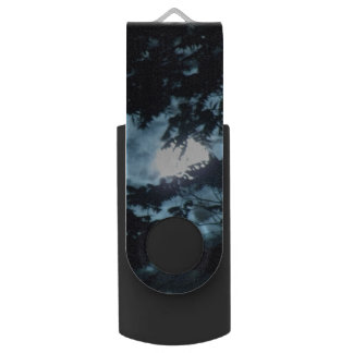 Moon Illuminates the Night behind Tree Branches Flash Drive
