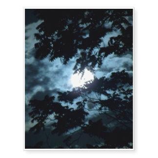 Moon Illuminates the Night behind Tree Branches Temporary Tattoos