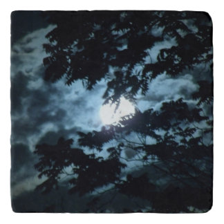 Moon Illuminates the Night behind Tree Branches Trivet