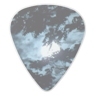 Moon Illuminates the Night behind Tree Branches White Delrin Guitar Pick