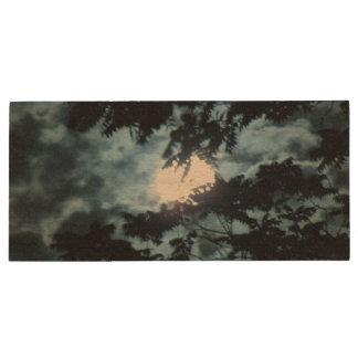 Moon Illuminates the Night behind Tree Branches Wood Flash Drive
