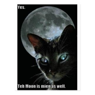 moon is mine lol cat postcard