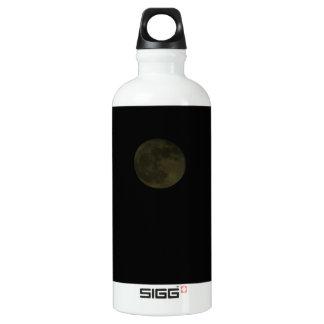 Moon January 30th 2010 Water Bottle