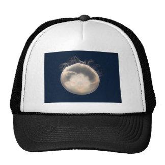 Moon Jelly Fish Beach Animal Scary Party Destiny Trucker Hat