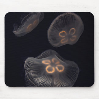 Moon Jellyfish Swimming Mouse Pad