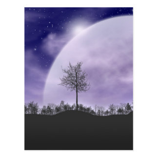 Moon Light Stars Sky Trees Whimsical Personalize Postcard