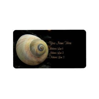 Moon Mollusk Sea Shell Address Label