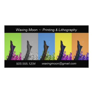 Moon Over Burnt Tree Rising_multi-hue sequence Photo Cards