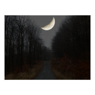 moon over forest poster